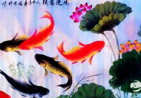 天之水网专访画鱼名家姜寿福先生