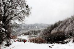 天之水网带您走进大山深处的李子园观雪景(天之水网组图)