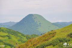 碧水蓝天白云伴  牛羊成群野花香—— 天之水网带您走进礼县上坪自然生态风景区