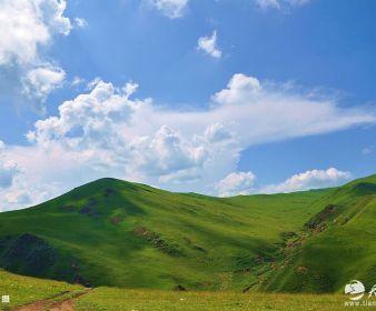 天之水网带您走进礼县上坪自然生态风景区