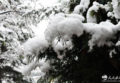 穆明祥:咏雪