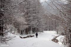 天水乡村雪景,真是美醉了!(天之水网组图)