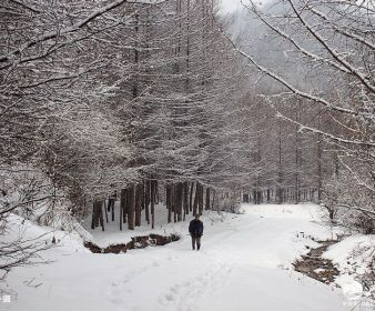 天水乡村雪景,真是美醉了!(组图)