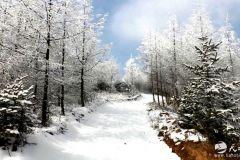 千里冰封 踏雪而行 —— 大门镇郭陈村风火山雪景