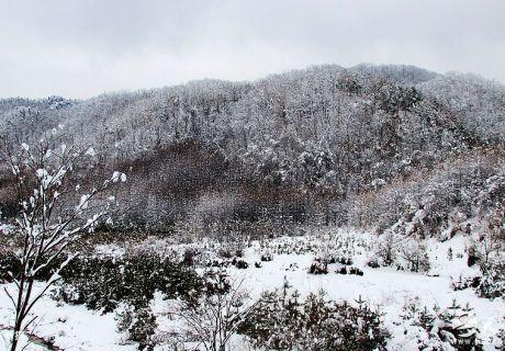 天水瑞雪添年味  乡村雪景美如画!(天之水网组图)