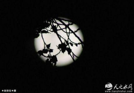 刘瑾:致月亮