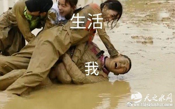 佘诗曼把王彦林按泥里表情包