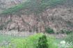 张春昌:黄河丹峡风景独好