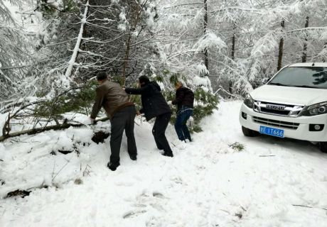 突降暴雪 天水市广播电视微波站雪中抢修保平安