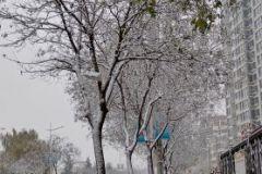 雪落天水(天之水网组图)