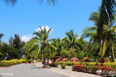 周末,天之水网带您走进海南岛感受椰风海韵(图)
